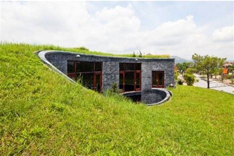 sustainable houses modern eco homes with green roof designs and rooftop gardens