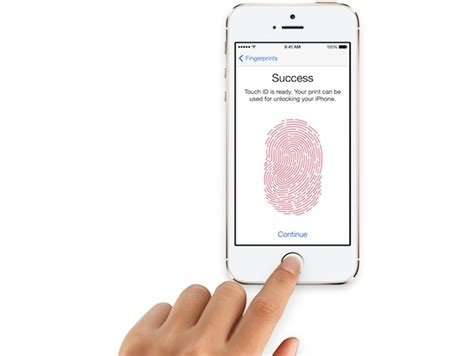 3 iphones 1 apple id alleged iphone 6 air 2 and mini 3 spotted with touch id sensor technology news