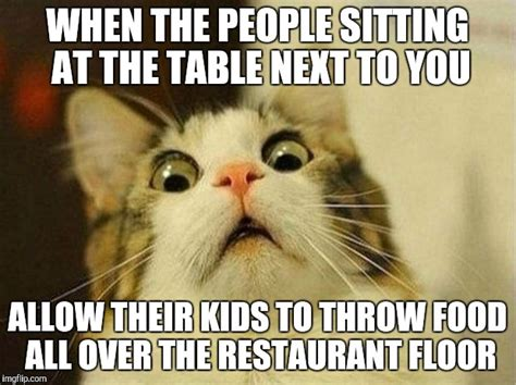 Cat Sitting At Table Meme - scared cat meme imgflip
