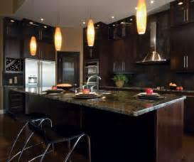 Modern kitchen cabinets in espresso finish by kitchen craft cabinetry
