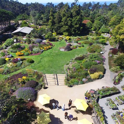 Fort Bragg Botanical Garden Your Gift Makes A Difference Support Mcbg Inc 2018 Fort Bragg California