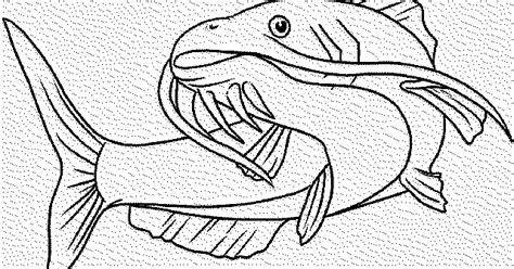 gambar ikan hitam putih air tawar  laut hias  konsumsi