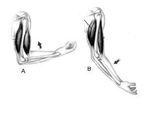 gerakan tangan  posisi   posisi   akibat