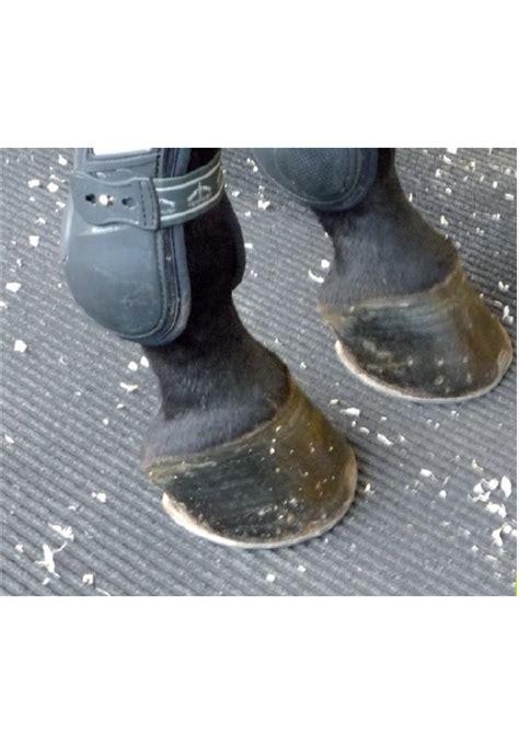 pavimenti in gomma per cavalli vendita agrigomma pavimento in gomma la selleria