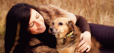 dogs and humans pet your how to make the human relationship really work