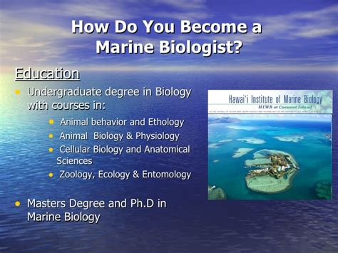 Marine Biologist Without Video Power Point Marine Biology Powerpoint