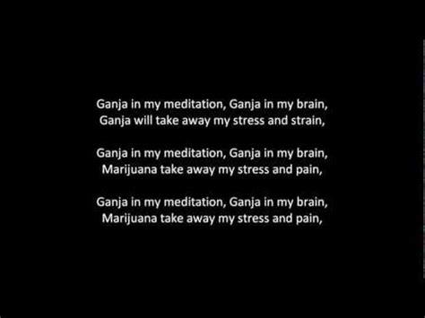 my lyrics free ganja in my brain lyrics free the best free software for