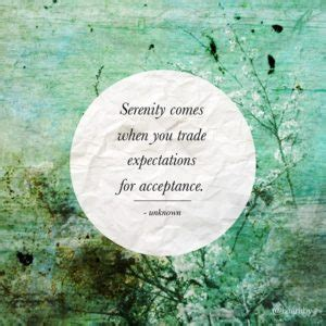 soul check 21 daily uplifts for those who want to live according to the spirit but their flesh overwhelms them books soul uplifting serenity quotes to inspire you daily
