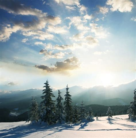 High Definition Landscape Okc Winter Landscape Highdefinition Picture Free Stock Photos