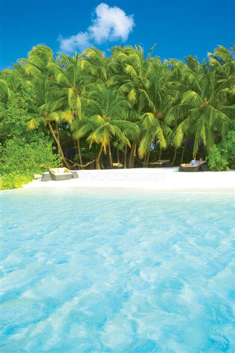 Hotel Baros, Maldives   Others