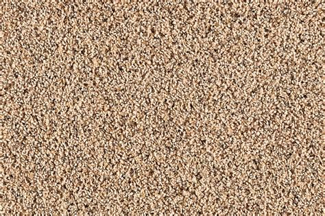Carpet Cuts Into Rugs by Cut Pile Rug Roselawnlutheran