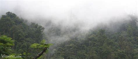 imagenes de peñas blancas nicaragua macizo de pe 241 as blancas nicaragua vianica com
