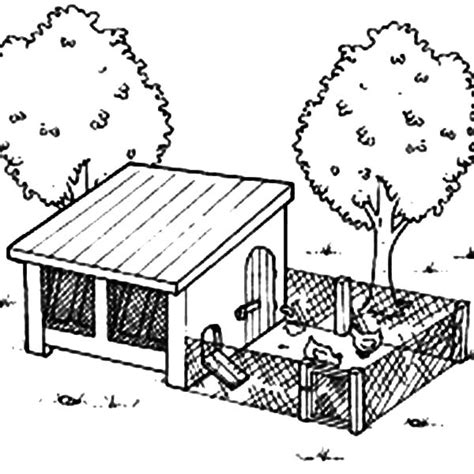 Coloring Page Chicken Coop | chicken coop netart