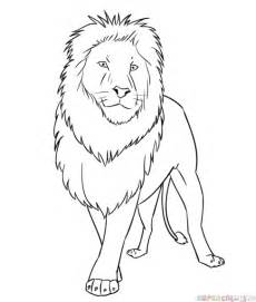 How to draw a cartoon lion step by step drawing tutorials