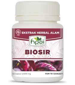 Obat Herbal Hpai Untuk Wasir obat wasir halalmart hni hpai