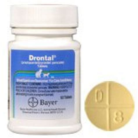 Drontal For drontal allwormer tablets for dogs 10kg only 2 95 excl gst free fast delivery