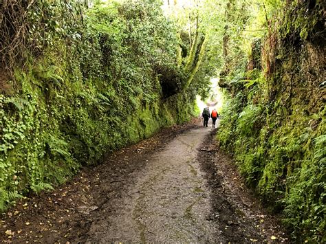 camino trail seven hikes you to do once in your we are