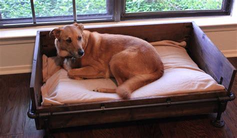 diy large dog bed diy industrial style dog bed petdiys com