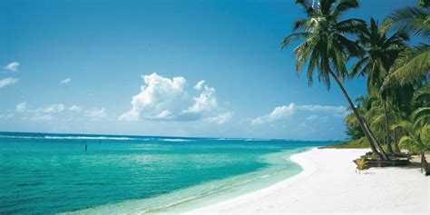 Couples Only All Inclusive Cayman Islands All Inclusive Adults Only Picture