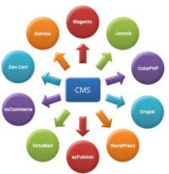 mobile content management system open source cms development services content management system india