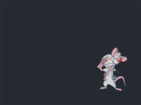pinky wallpaper pinky and the brain by sma rmy on deviantart