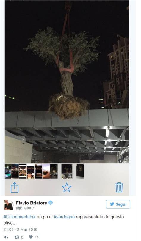 testo billionaire flavio briatore olivo nella terrazza billionaire dubai foto