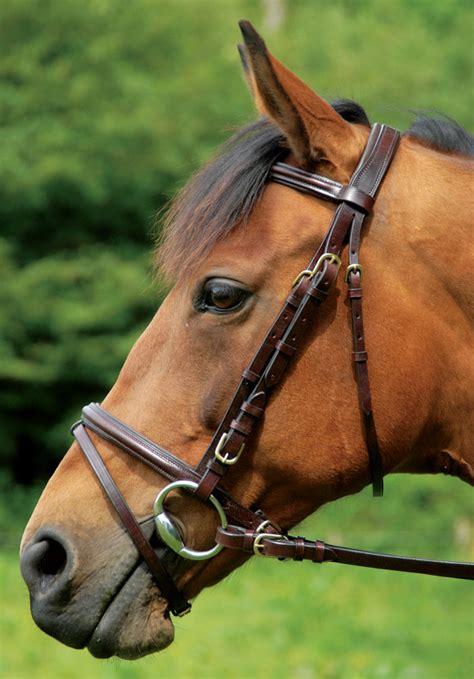 comfort bridles reviews comfort bridle reins celtic equine