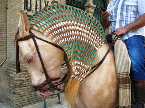 hairstyles for horses pin by paige metcalfe on horse braiding pinterest