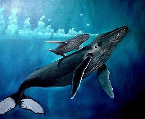 17 best ideas about whale on whale drawing