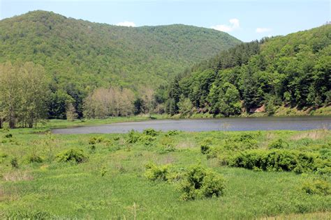 file gfp pennsylvania landscape of pond and hills jpg wikimedia commons