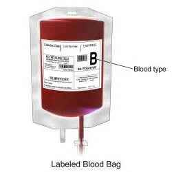 File blausen 0086 blood bag png wikimedia commons