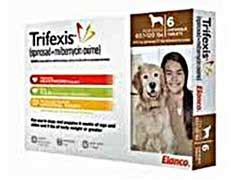 trifexis for puppies trifexis for dogs side effects