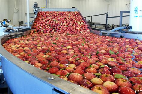 Elite Search For Mac Michigan Apple Growers Changing Orchards Adding Technology To Boost Production
