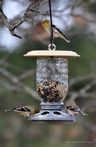 Feeder Bird The Garden Roof Coop Diy Feeder Bird Feeders