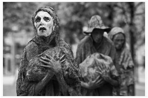 annals of the famine in ireland in 1847 1848 and 1849 books the famine begins 183 the great hunger the britian