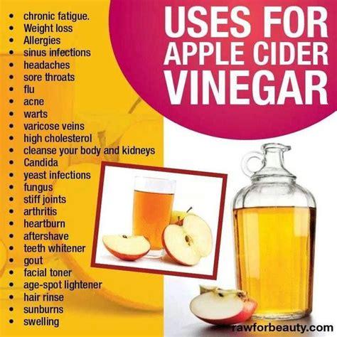 apple cider vinegar apple cider vinegar uses remedies pinterest