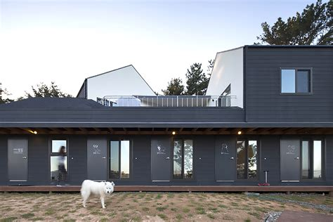 Bow Wow House Is A Dog Friendly Guesthouse In South Korea Bow Wow House By Design Band