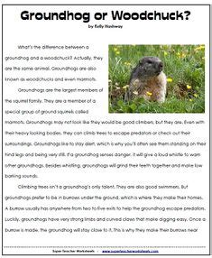 groundhog day viewing worksheet answers groundhog day comprehension worksheets search