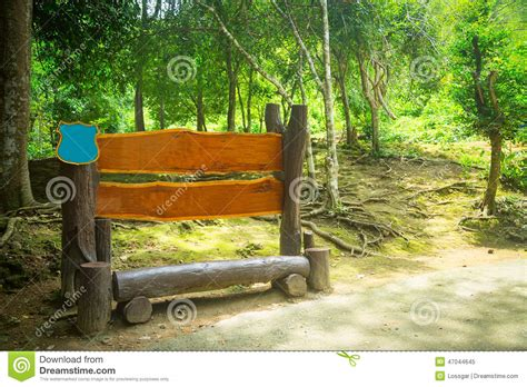 bench in forest bench in wood in the forest stock photo image 47044645