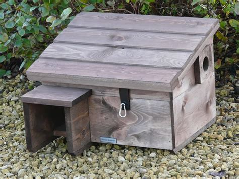 Hedgehog House Plans 17 Best Ideas About Hedgehog House On Hedgehog Home Where Do Hedgehogs Live And