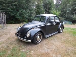 For sale classic volkswagen beetle