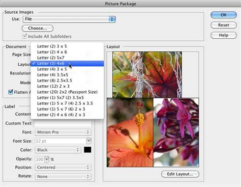 Photoshop Layout Multiple Images | how to print multiple images on a single page macworld