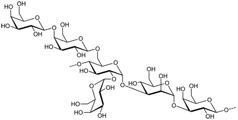 diagram of a polysaccharide opinions on polysaccharide