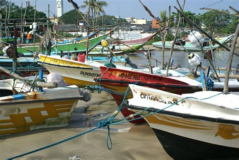 fishing boat for sale sri lanka the oruwa catamaran fishing boats of the galle fisherman