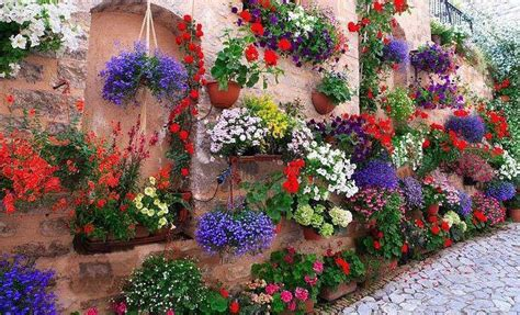 beautiful container gardens beautiful container garden the garden