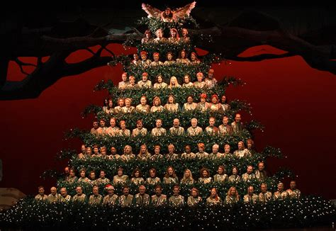 guinness world of records for christmas trees yet