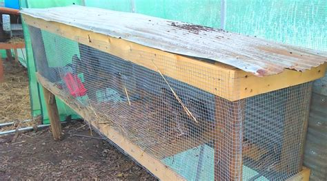 Quail Housing Plans Easy Quail Hutch You Can Build In One Weekend