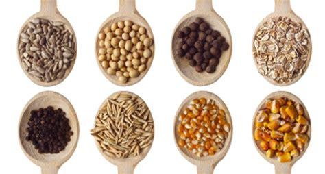 al grano y sin yin y yang en los cereales blog elena corrales nutrici 243 n y salud