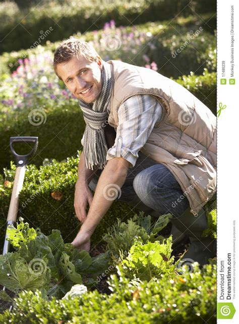 Is Working In The Garden by Working In Garden Royalty Free Stock Images