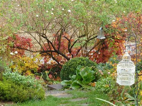 giardino in autunno amici in giardino giardinaggio e dintorni giardinaggio